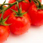 トマト塩糀の価格(値段)や通販は?糀屋(高崎)の新調味料【所さんのお届け物】