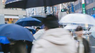 温暖化型豪雨とは?備えや対策は?西日本豪雨や異常気象を最新研究結果で検証【NHKスペシャル】